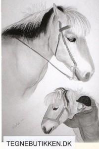 heste konfirmationsgave